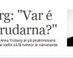 idg_brudarna-300x120